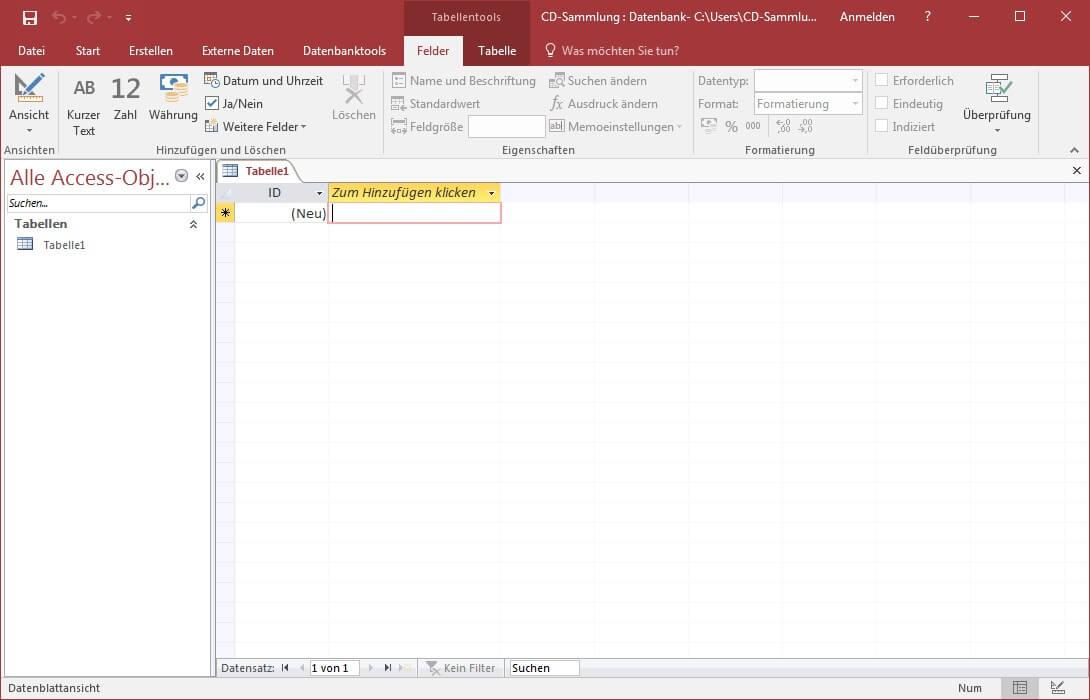Screenshot einer leeren MS Access Tabelle
