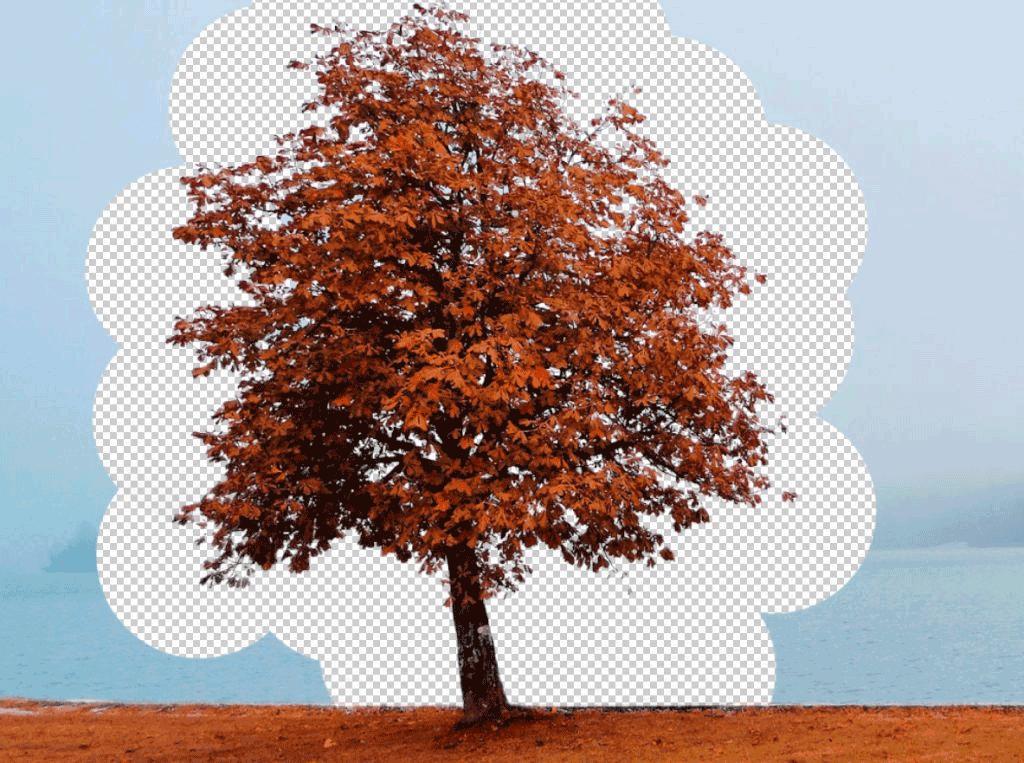 Photoshop hintergrund rot