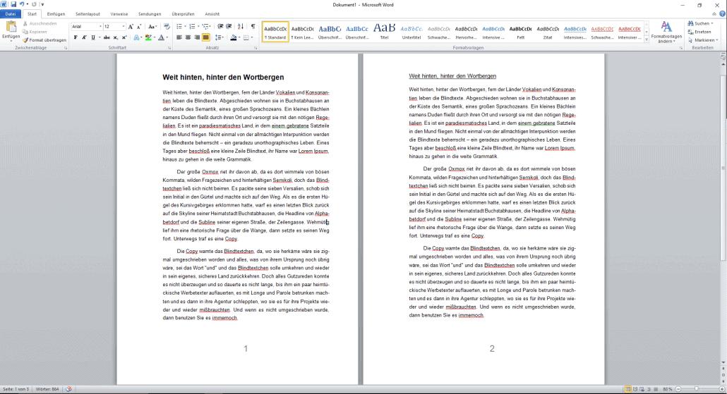 Word-Dokument Formatierung Seitenzahlen