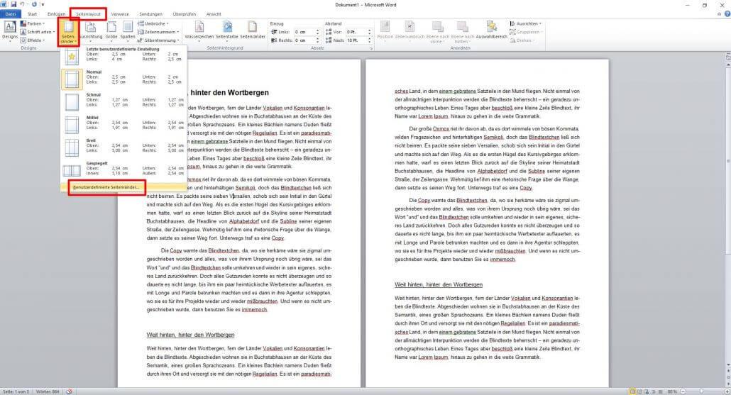 Word-Dokument Seitenränder formatieren