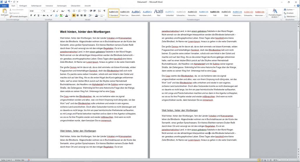 Word-Dokument Darstellung Textformatierung